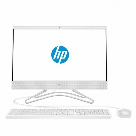 HP 200G4 AiO i310110U 4GB 1TB PC